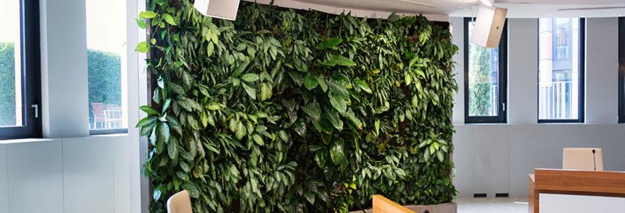 Choisir un mur végétal